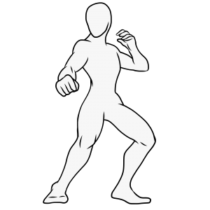 Martial Arts and The Body